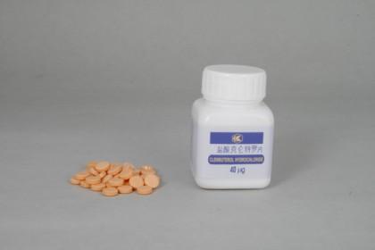 Clenbuterol 40mcg (100 tab)